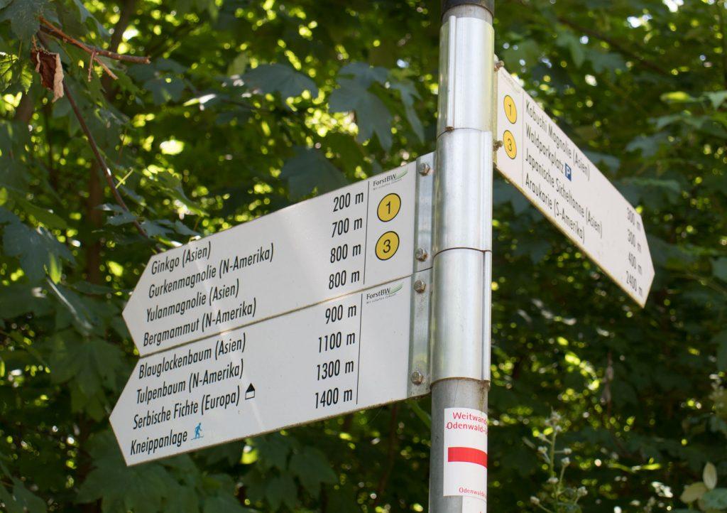 Wanderungen Weinheim