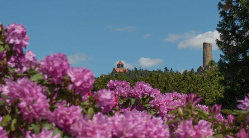 Weinheim im Frühling